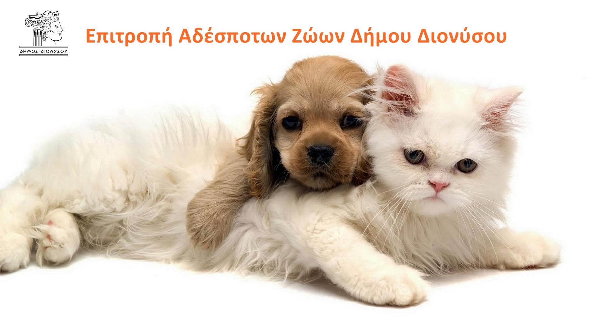 Επιτροπή Αδέσποτων Ζώων Δήμου Διονύσου