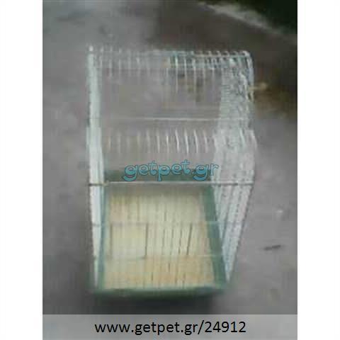 Κλουβί Akus για πτηνό
