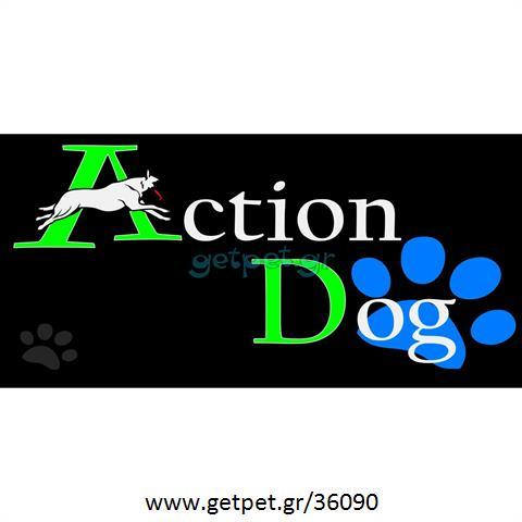 Εκπαιδευτής σκύλων Πάτρα Αχαΐας