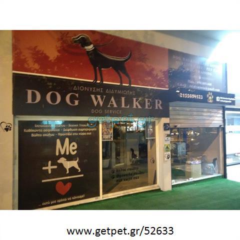 Περπατητής | Dog Walking Καλλιθέα Αττικής