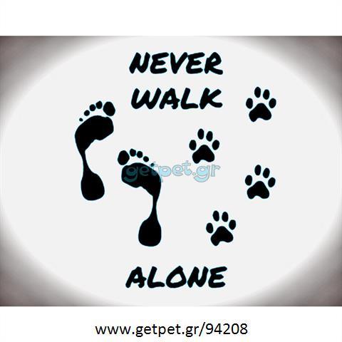 Περπατητής | Dog Walking Βύρωνας Αττικής