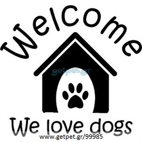 Περπατητής | Dog Walking Κορυδαλλός Αττικής